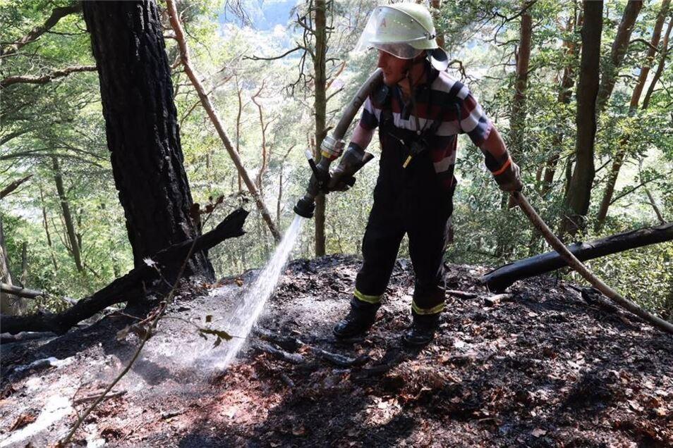 Die Glut muss bis tief im Waldboden gelöscht werden, damit sie nicht aufflammt oder sich doch noch ausbreitet.