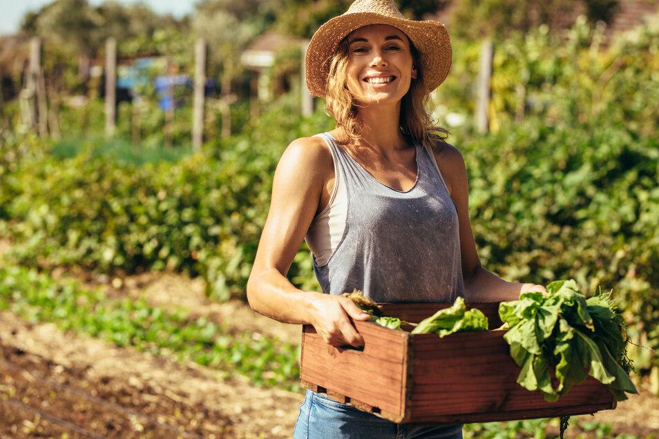 Für Gärtner, Farmer und die, die es noch werden wollen, gibt es alles - inklusive Fachberatung - in allen elf LandMAXX-Filialen und natürlich auch online.