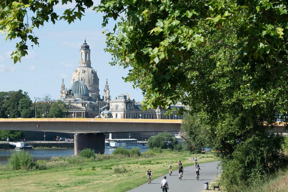 Radfahrer sind auf dem Elberadweg in Dresden unterwegs.