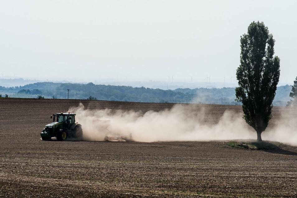 Auch die Landwirtschaft in der Lausitz leidet zunehmend. Die Böden trocknen aus, Staubwolken werden zu ständigen Begleiter der Bauern.