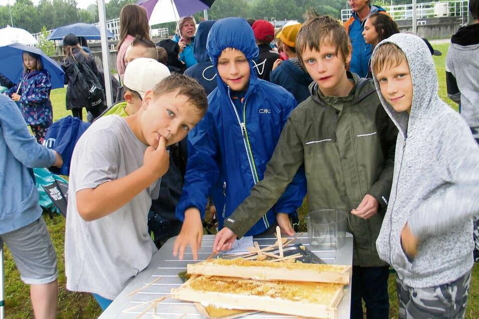 Mio, Linus, Lukas und Jannis (v.l.n.r.) aus der 3. Klasse der Pestalozzi-Grundschule Weißwasser kosten den ersten Stadthonig, den ein Bienenvolk der Stadtwerke Weißwasser GmbH (SWW) produziert hat. Der ist echt lecker, sind sie sich einig. Und obendrein