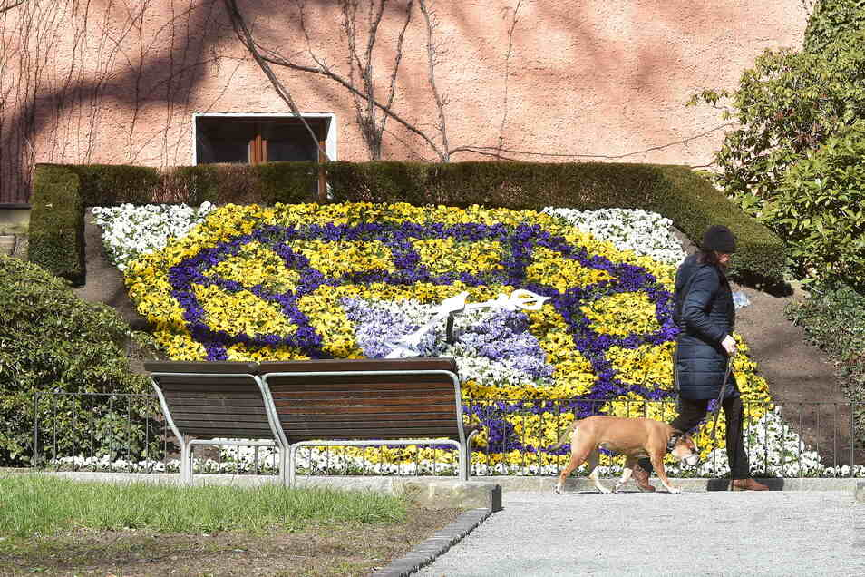 An der Zittauer Blumenuhr treffen sich seit Wochen Kritiker der Corona-Maßnahmen. Doch inzwischen ist der Veranstaltungsort eher ungeeignet - aufgrund der Teilnehmerzahl.