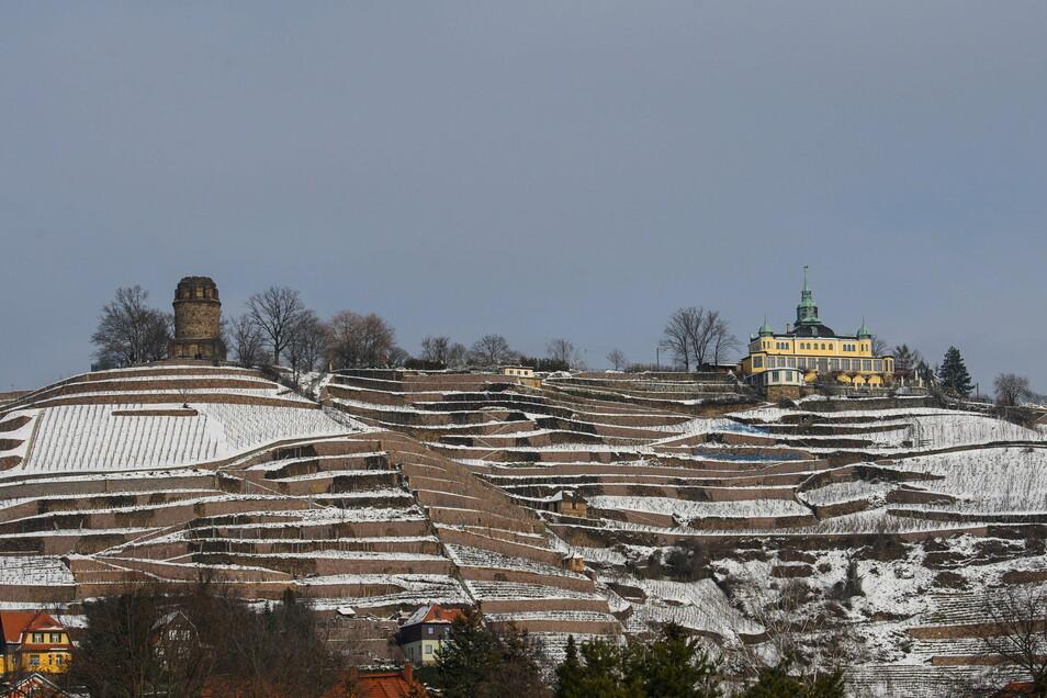 Verschneit sind in Radebeul die Weinberge unterhalb der Lößnitz unterhalb vom Bismarckturm (l) und dem Spitzhaus.