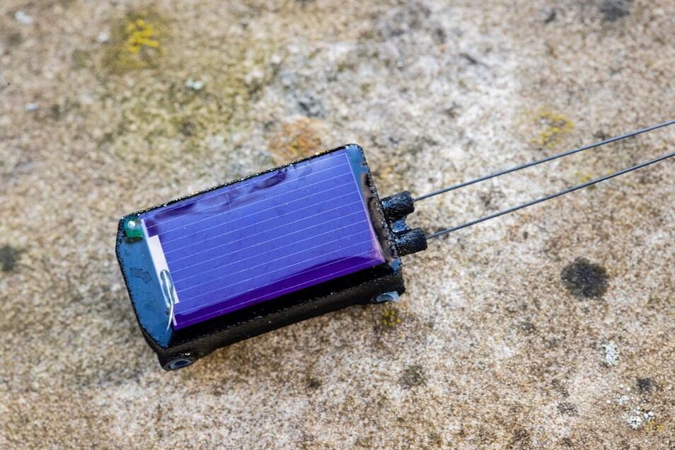 Fast 10.000 Stück der nur fünf Gramm leichten Sender stellt das Dresdner Unternehmen Inradios für das Icarus-Projekt her. Aktuell gibt es Ideen für noch kleinere Varianten.