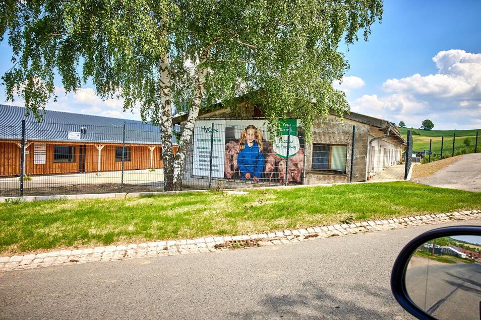 Fast 4.500 Ferkel stehen in den Ställen der Stolpen Agro GmbH und sorgen für Gestank.