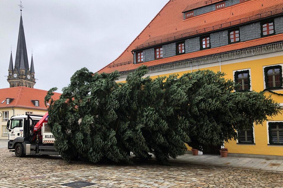 Der Neustädter Weihnachtsbaum kommt am Marktplatz an.