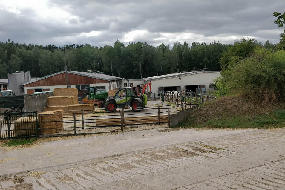 Die Landwirte beruhigten die Tiere und brachten sie in einen Stall abseits der Brandstelle.