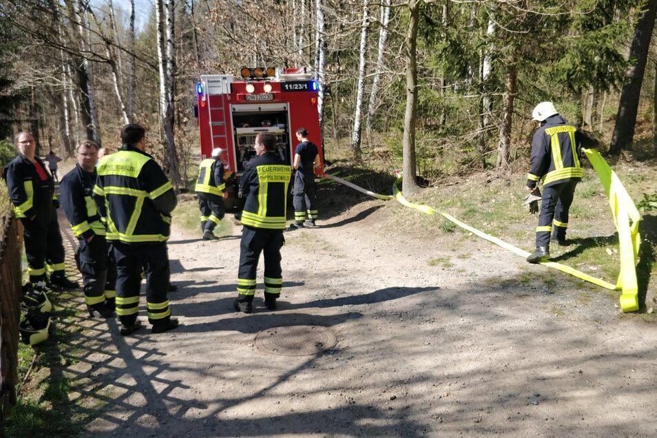 Die Feuerwehrleute legen eine Schlauchleitung in den Wald.