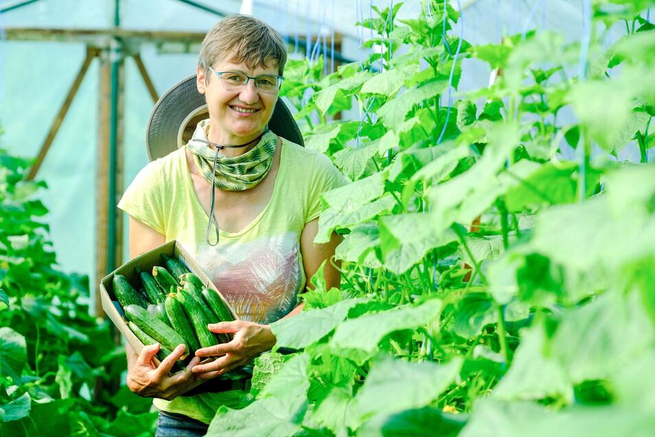 Leiterin Cornelia Obst im Interkulturellen Garten Coswig mit frisch geernteten Gurken. Mit dem Erlös finanziert das Projekt etwa die Kosten für Wasser. Eigentliches Ziel des Gartens ist es aber, Menschen zusammenzubringen und ihnen zu zeigen, dass Gärt