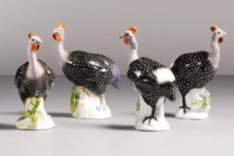Vier von acht Kaendler-Perlhühnern, die zum Verkauf stehen.