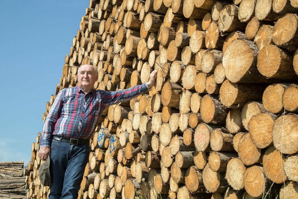 Martin Schimanz steht vor einem Stapel haushohem Kiefernholz. Viel Wert ist es nicht, nachdem sich der Borkenkäfer unter der Rinde eingenistet hat. Aber aus dem Holzverkauf wird die Bewirtschaftung des Waldes bezahlt.