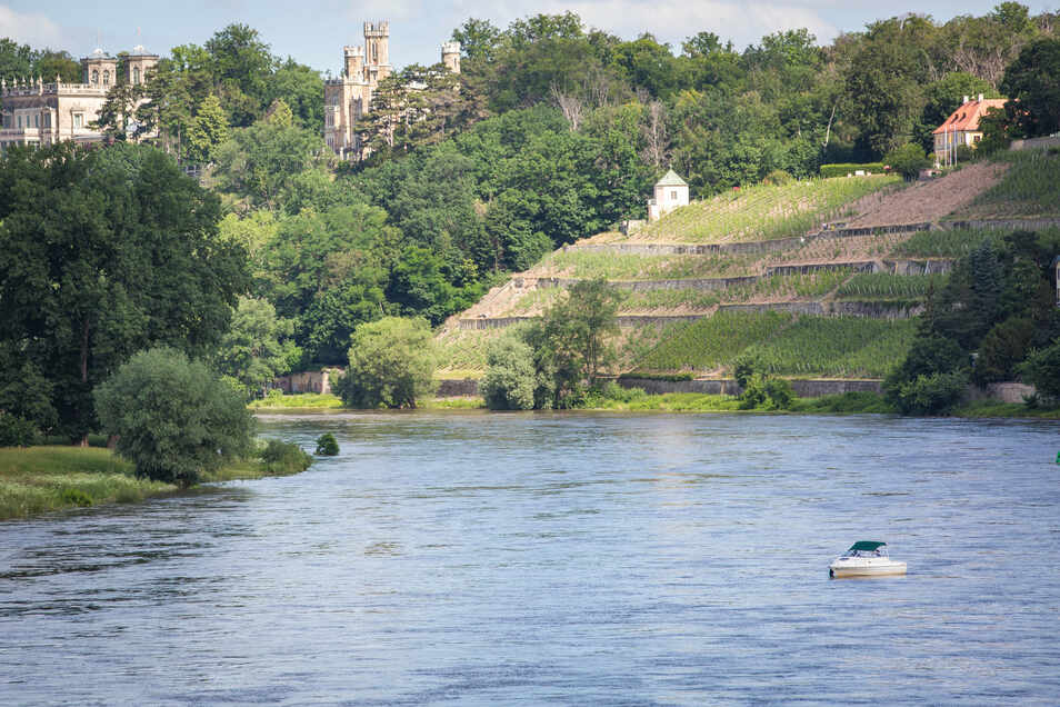 Majestätisch wirkt die Elbe, wenn sie so viel Wasser führt wie in diesen Tagen.