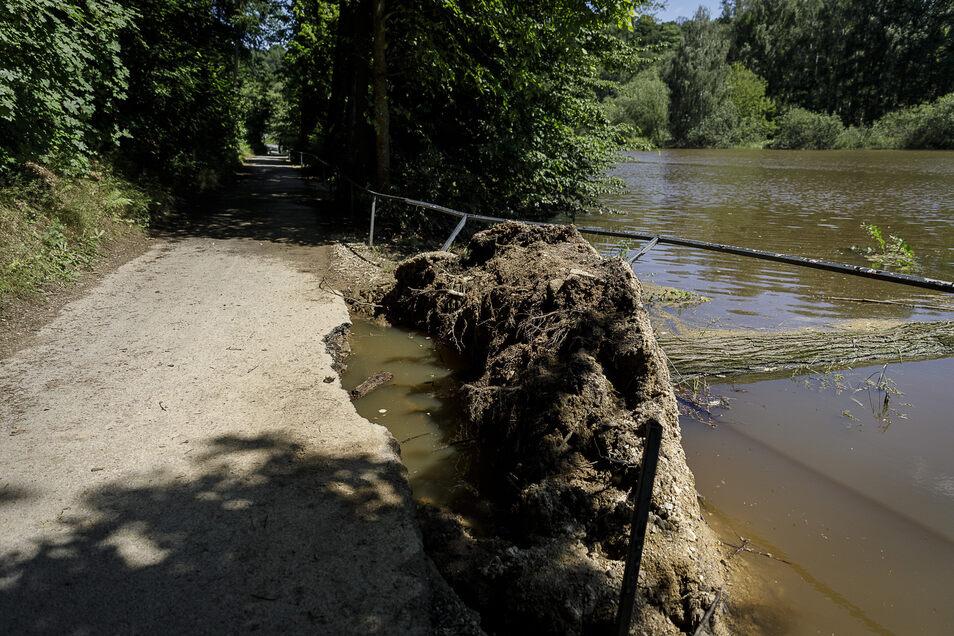 Der Neißeradweg war am Wochenende zwischen Obermühle und Volksbad durch den Sturz mehrerer Bäume in Mitleidenschaft gezogen worden. Jetzt ist er wieder offen.