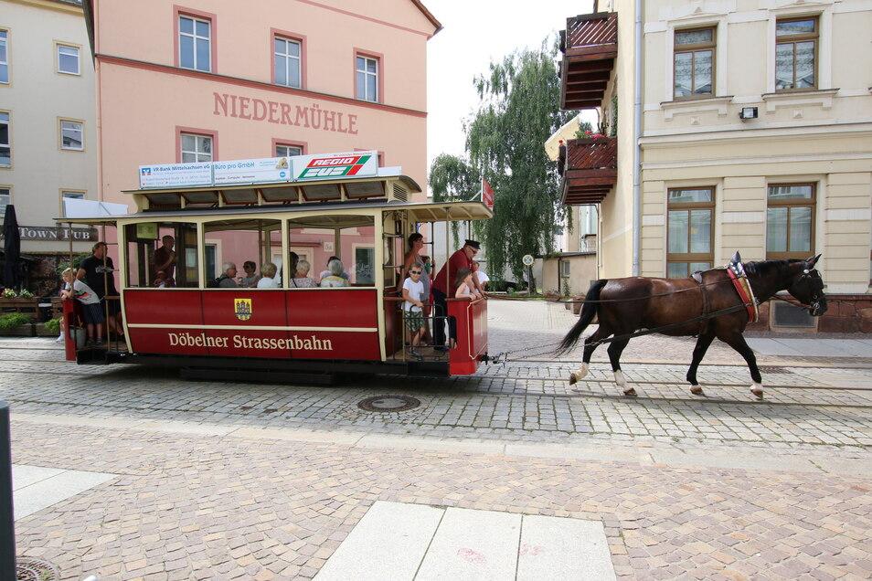 Mit der Pferdebahn durch die Innenstadt – dieses besondere Erlebnis hat lange auf sich warten lassen. Am Sonntag zum musikalisch-historischen Stadtbummel wurde aber endlich wieder angespannt. Für die Einheimischen ein gewohntes Bild, die Touristen züc