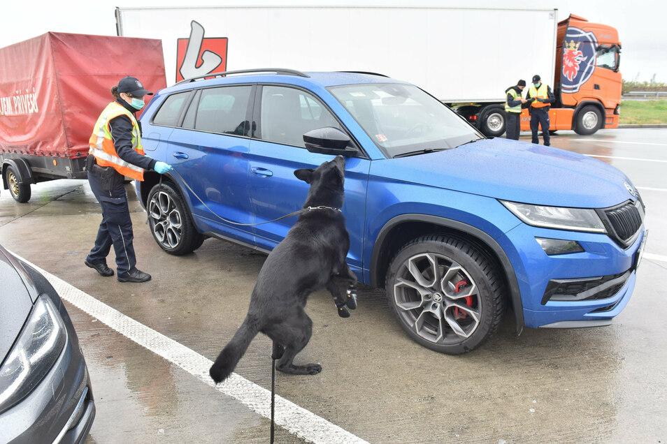 Auf der Suche nach Drogen ist die empfindliche Hundenase immer noch unverzichtbar. Dann übernimmt moderne Technik.