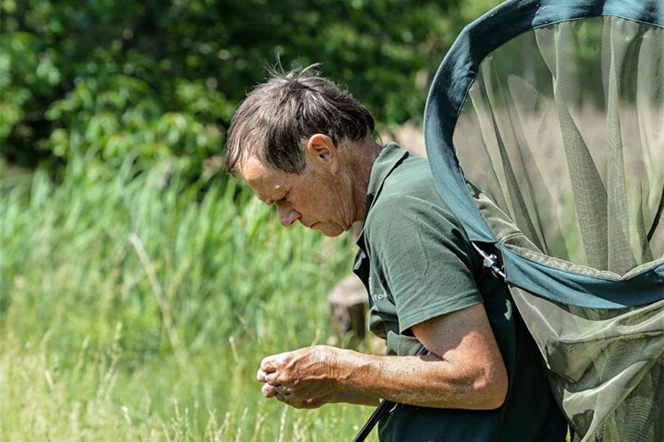 Seit knapp 20 Jahren beschäftigen Herbert Schnabel die Libellen im europäischen Großschutzgebiet in der Lausitz.