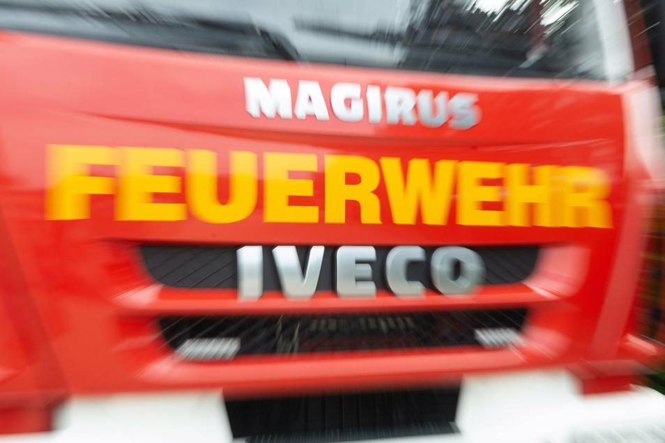 Die Dresdner Feuerwehr rückte am Montag zu einer Tierrettung aus.