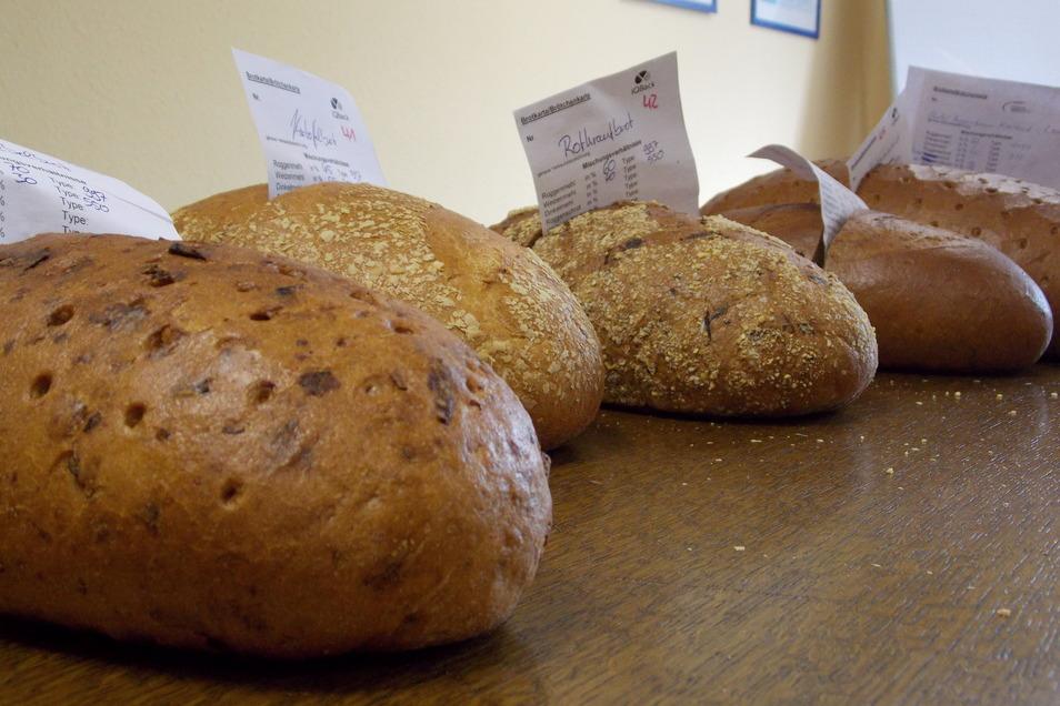 Insgesamt 61 Brote hatten die Bäcker beim diesjährigen Brottest prüfen lassen.