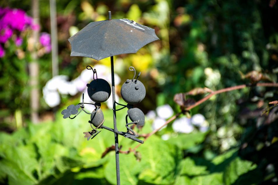 Auch Frösche gibt es im Garten an der Nordstraße. In Ermanglung eines Teiches aber dekorative aus Stahlblech. Was andere Gartenliebhaber für unerlässliche Accessoires halten, ist bei Zerge eher selten. Die Frösche erregen aber das Interesse seines kleinen Enkels. Der hat auch ein Badebassin in Opas Paradies stehen.