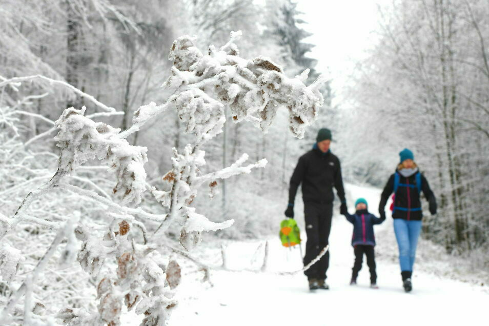 Der Weg zum Hochwald ist schon winterlich.