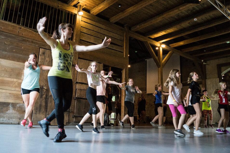 Susann Scholze (vorn) machte es in der Gröditzer Dreiseithof-Scheune vor – und die zumeist weiblichen Tänzer vor der Bühne machten es ihr nach: Beim Tanzfest am Sonnabend kamen die Besucher aber längst nicht nur bei der Zumbaparty ins Schwitzen.