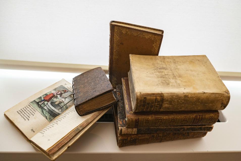 Lessing hatte in seiner privaten Bibliothek unter anderem Publikationen zu Theologie, Geschichts- und Literaturwissenschaft sowie Ästhetik. Auch altertümliche Schriften und naturwissenschaftliche Arbeiten fehlten nicht.