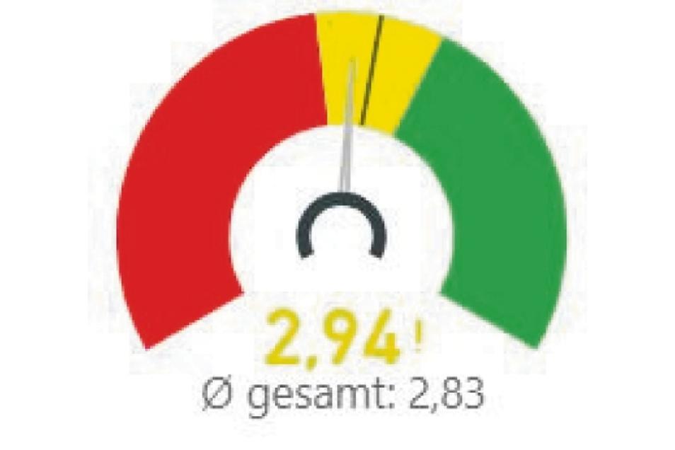 Im gelben Bereich: In Summe schneidet Riesa im Familienkompass etwas schlechter ab als der Sachsenschnitt.