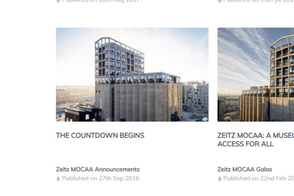 Ein Vorbild für Riesa? Das MOCAA, das Zeitz Museum of Contemporary Art Africa, in Kapstadt ähnelt dem Riesaer Muskator baulich. Der vor einigen Jahren umgebaute ehemalige Getreidespeicher steht außerdem inmitten der südafrikanischen Metropole.