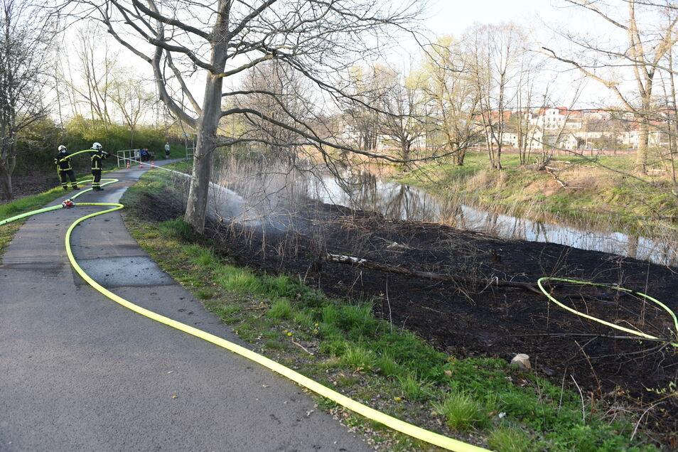 Es brannte eine Fläche von etwa 15 mal 20 Metern an der Mulde.