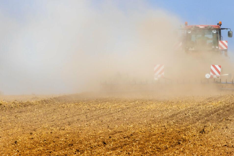 Ein Traktor zieht eine Egge über ein abgeerntetes Feld und wirbelt eine große Staubwolke auf. Hitze und Trockenheit stellen die Landwirte im Kreis auf eine harte Probe.