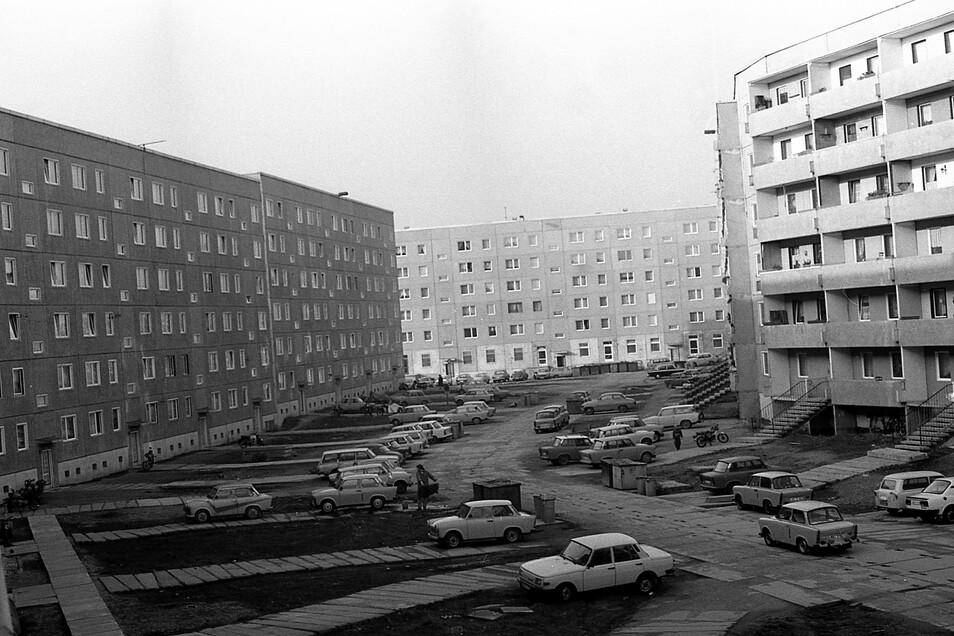 Auf der Antonstraße war 1989 noch so gut wie gar kein Baum oder Strauch zu sehen.