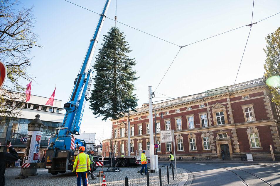 Hier schwebt der Weihnachtsbaum auf dem Platz der friedlichen Revolution ein.