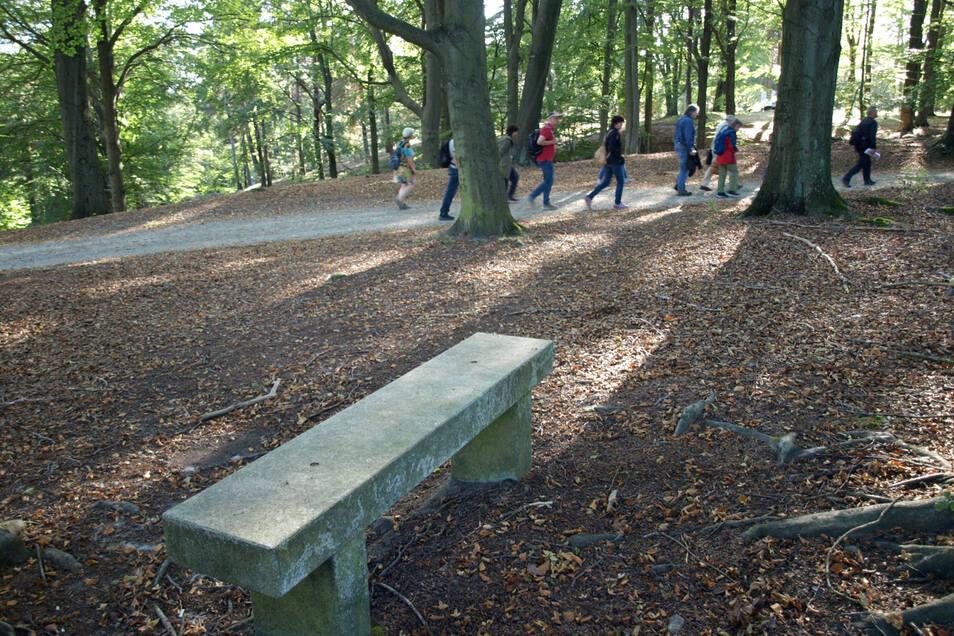Riesengebirge, Alaunbergwerk und Park im Blick machte die Stelle nahe Maiwiese im Bergpark zum Lieblingsplatz von Ex-Parkmeister Brucksch, woran die Bank erinnert. Aktuell gibt es im Park kaum Bänke zur Rast.