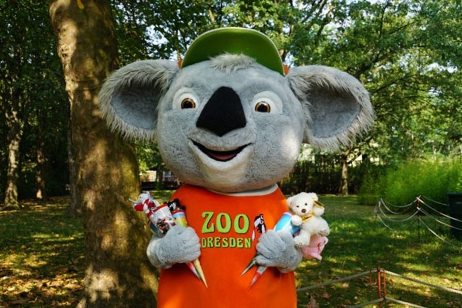 Im Dresdner Zoo ist eine Woche nach der Schuleinführung großer Zuckertütentag.