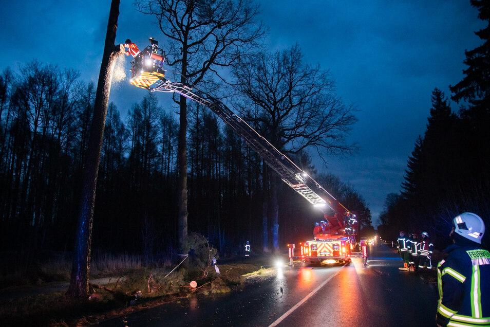 Kurzzeitig ging am Montagmorgen nichts mehr auf der Straße zwischen Bischofswerda und Wölkau. Die Feuerwehr musste einen abgebrochenen Ast, der über der Fahrbahn hing, beseitigen.