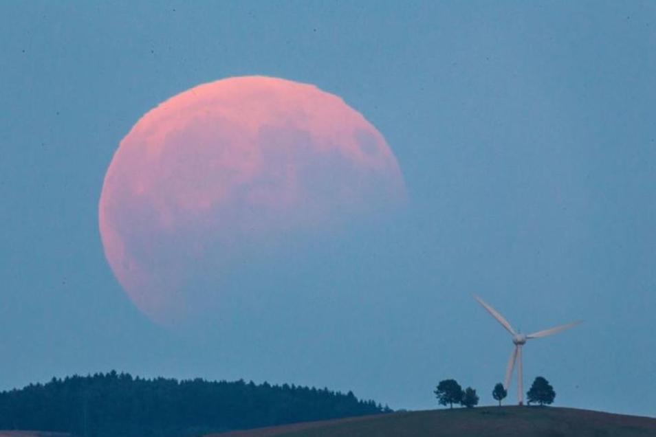 So ein Bild vom Mond hatte man von der Radeberger Sternwarte aus im August 2017.