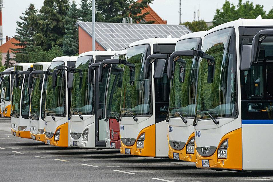 Auf der Linie 309 Dresden-Radeberg-Pulsnitz sind ab Montag mehr Busse unterwegs.