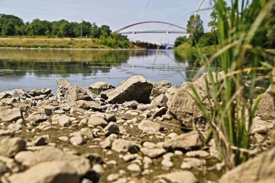 Trockenheit: 2018 war die Elbe im Raum Riesa mehr als trocken – so wie auf dem Foto gegenüber der Riesaer Hafenzufahrt. Bei Strehla tauchten die Hungersteine auf.