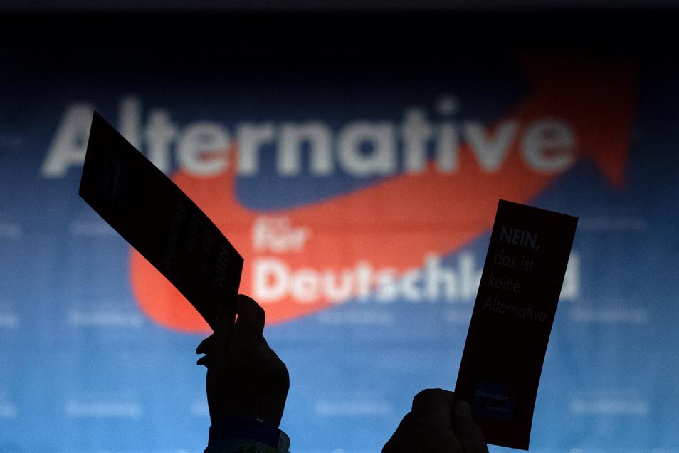 Die Landtags-Kandidatenkür der AfD dauerte zu lange. Deshalb werden ihr nun etliche Plätze wieder abgesprochen.