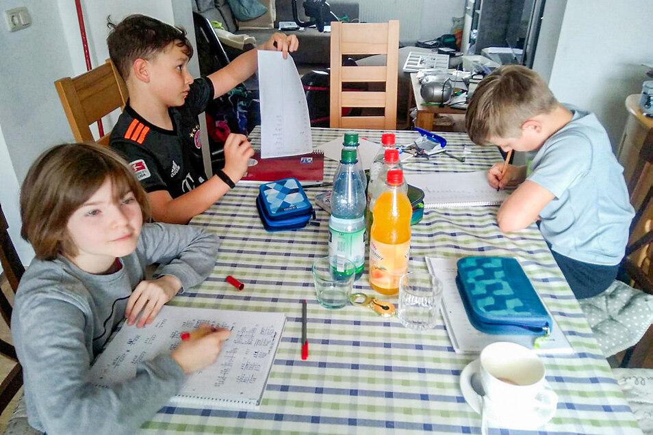 Frieda (3. Klasse/vorn links im Uhrzeigersinn), Charlie (5. Klasse) und Linus (5. Klasse) beim Erledigen ihrer Schulaufgaben im Hause Tröster in Hoyerswerda.