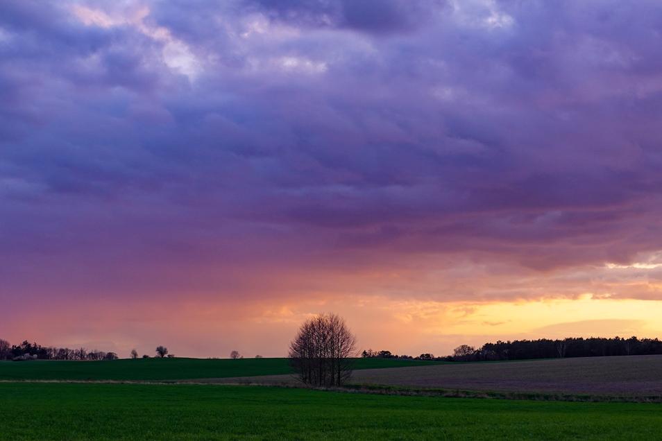 Wolken dominieren auch das Wochenende in Sachsen - am Sonntag kann auch die Sonne durchkommen. Für den April bleibt es untypisch kalt.