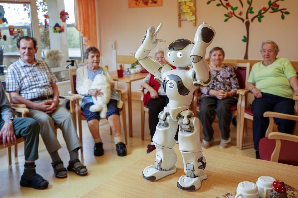"""Während der Roboter Nao tanzt, streichelt eine Frau das Kuscheltier Paro, das auf Berührungen reagiert. Im Pflegeheim """"Am Belmsdorfer Berg"""" in Bischofswerda wurde jetzt moderne Technik getestet."""