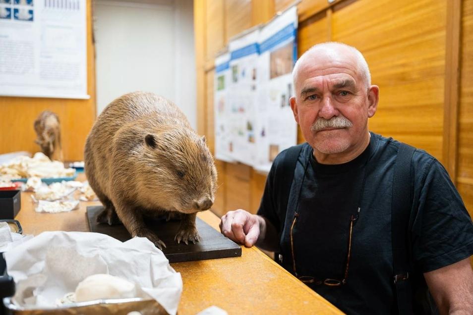 Seit 1980 lebt und arbeitet Hermann Ansorge in der Oberlausitz. Er bleibt auch als Ruheständler Senckenberg, der Forschung und Ausbildung treu.