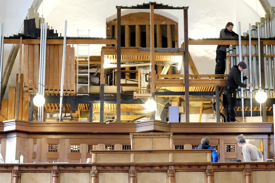 Die restaurierte Jehmlich-Orgel wird wieder in der Frauenkirche Meißen aufgebaut.