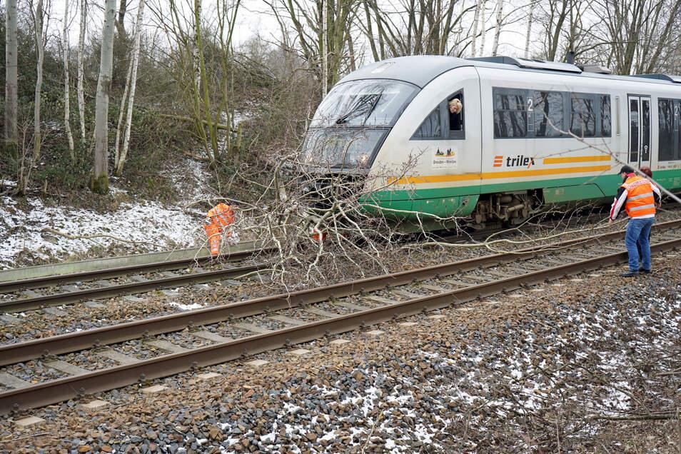 """Umgestürzte Bäume auf den Schienen – der Durchzug von Sturmtief """"Sabine"""" könnte zu Einschränkungen im Bahnverkehr führen (Symbolfoto)."""