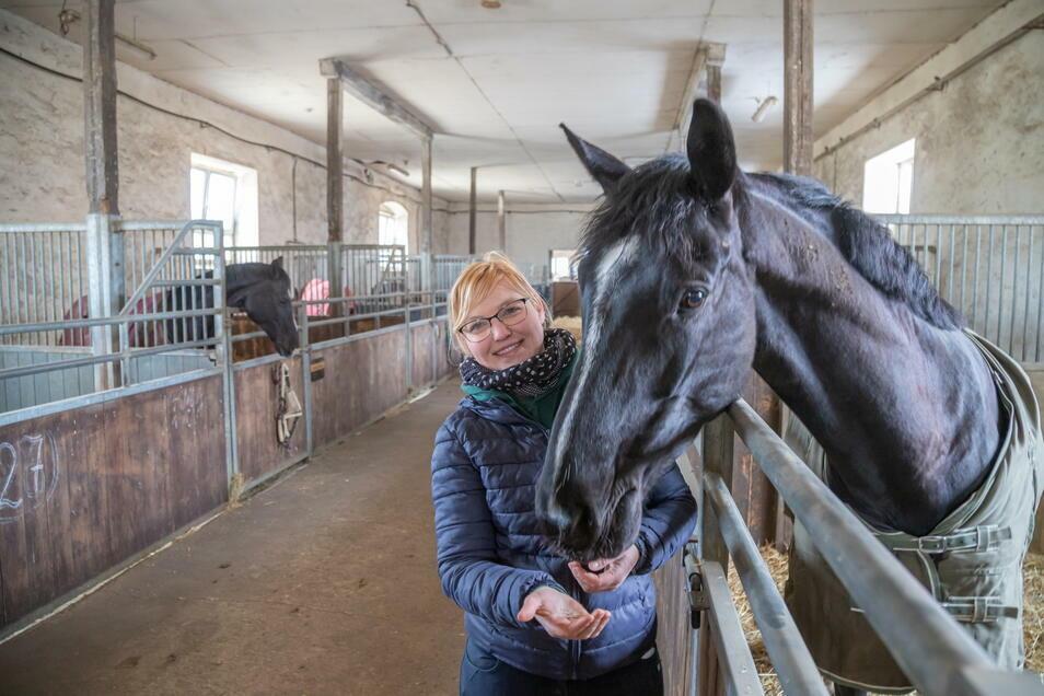 Kristin Kuhn und Bella Deluxe im Stall des PSV Am Geyersberg in Kodersdorf. Impfungen sollen die Pferde vor dem Herpes-Virus schützen.