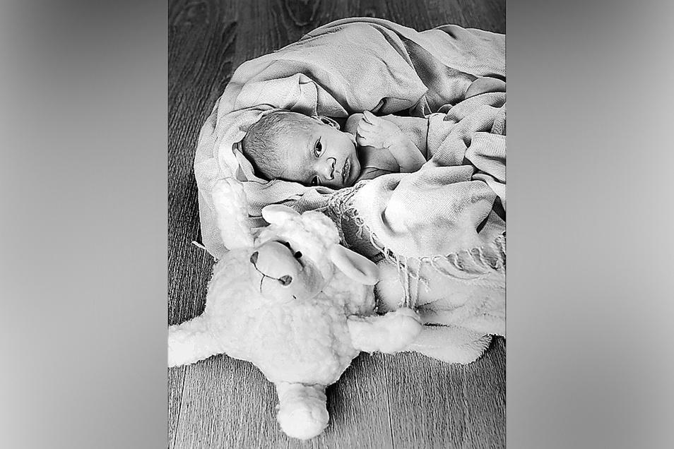 Willy Kuno Vogel, geboren am 24. Juli, Geburtsort: Diakonissenkrankenhaus Dresden, Gewicht: 2.560 Gramm, Größe: 50 Zentimeter, Eltern: Katrin Kuhnert und Sebastian Vogel, Wohnort Dresden