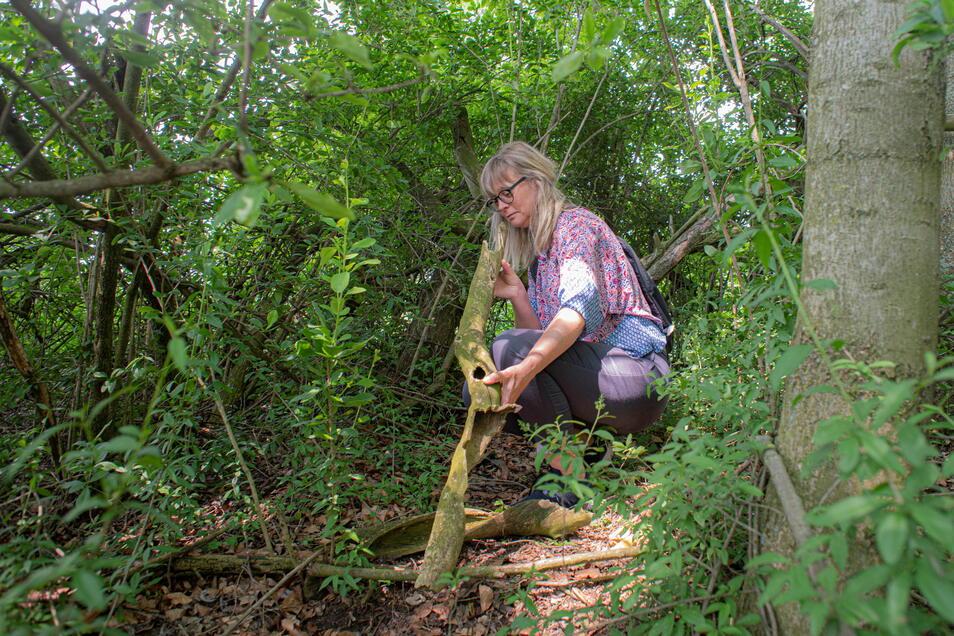 Zimperlich darf man nicht sein. Manche Schätze liegen tief im Wald an schwer zugänglichen Stellen.