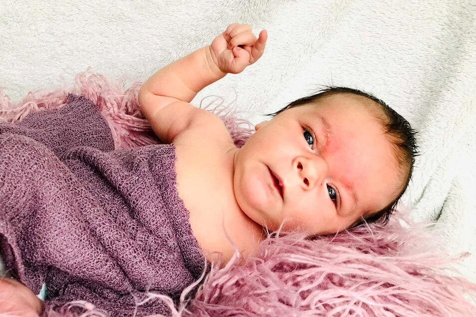 Florence, geboren am 7. Januar, Geburtsort: Dresden, Gewicht: 4.260 Gramm, Größe: 52 Zentimeter, Eltern: Sarah und Martin Grüneberg, Wohnort: Ohorn
