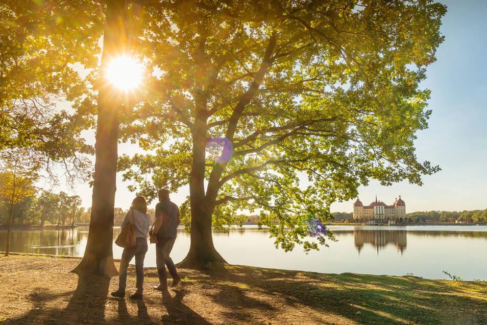 Schloss Moritzburg gehört zu den am häufigsten besuchten Parkanlagen in Sachsen.
